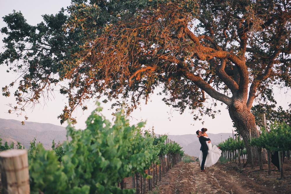 santa barbara wedding photographer gainey vineyard wedding reception saint barbara greek orthodox los angeles winery -1526