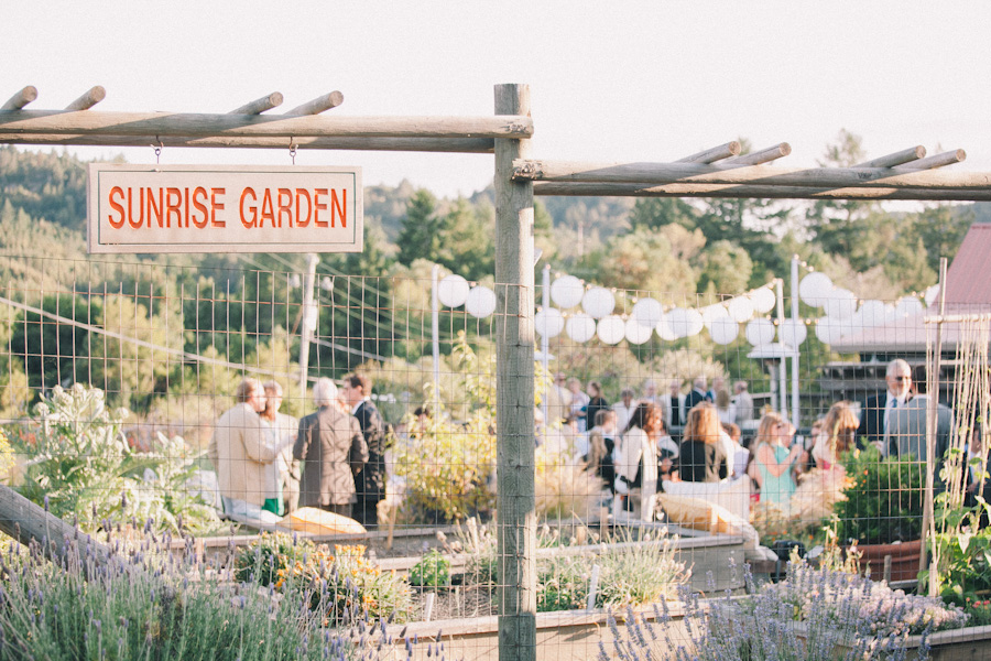 mayacamas ranch wedding photographer j wiley photography rustic elegant wedding colorful candid barn vineyard napa calistoga wine country california destination wedding photographer-6898