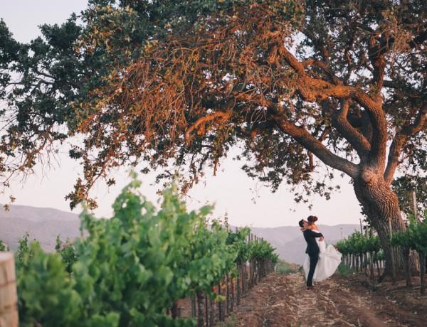 santa barbara wedding photographer gainey vineyard wedding reception saint barbara greek orthodox winery