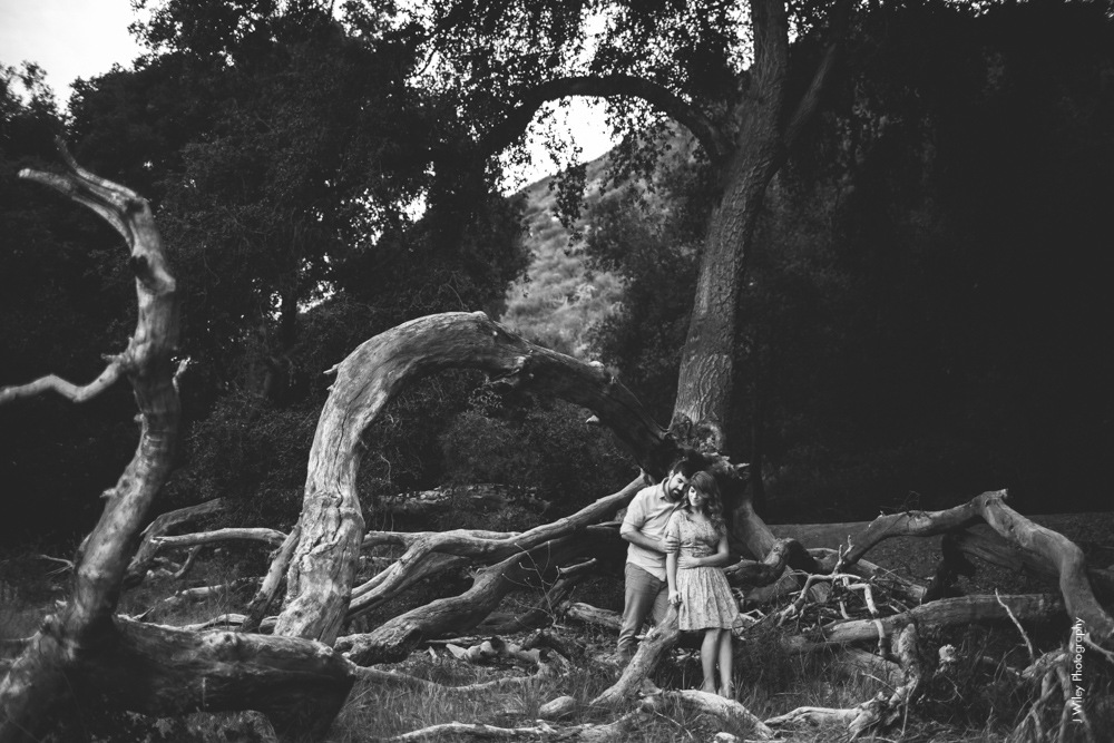 malibu engagement photography los angeles wedding photographer candid indie field mountains wildflowers-1195
