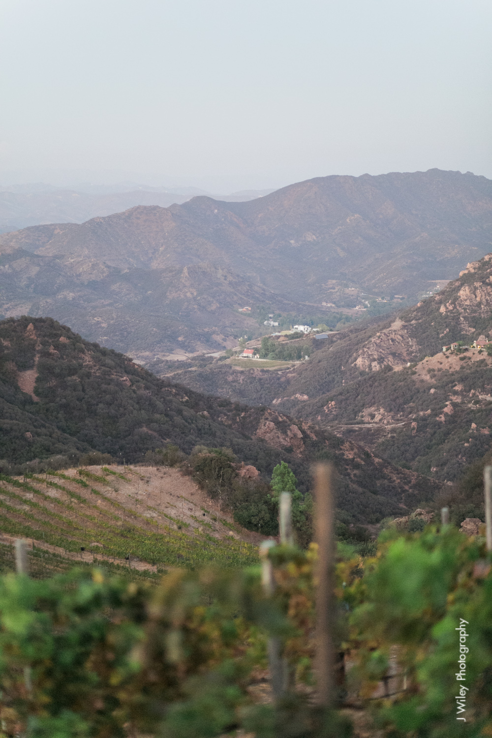 j wiley rustic whimiscal saddlerock ranch vineyard wedding malibu neutral gold mountains-1499
