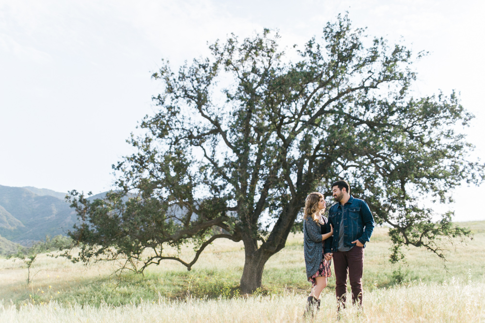 malibu engagement photography los angeles wedding photographer candid indie field mountains wildflowers-1040