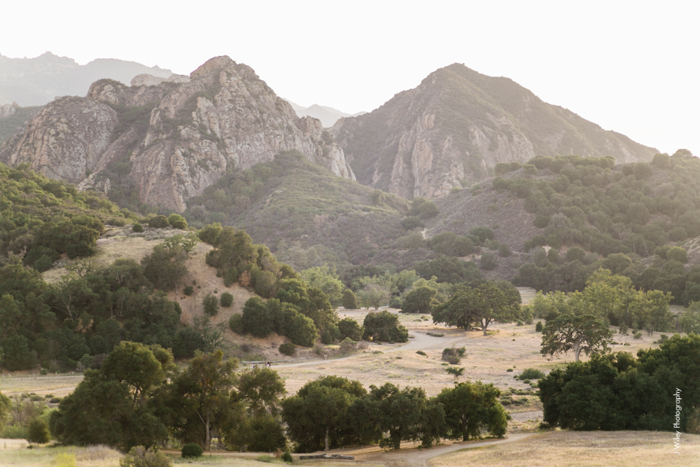 malibu engagement photography los angeles wedding photographer candid indie field mountains wildflowers-1128